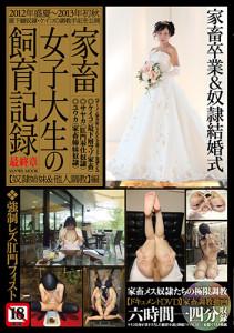 kachisaisyu_cover_DIC620_OL