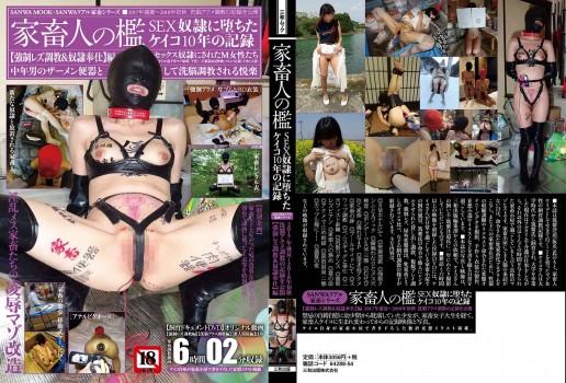 改 keiko_cover_B_DIC146_OL