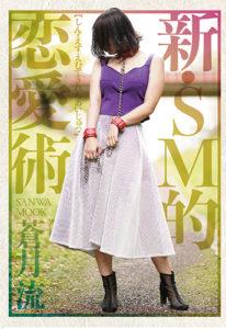 新・SM的恋愛術 表紙