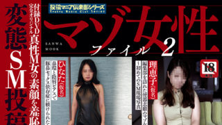 【マゾ女性ファイル 2】が発売中です。